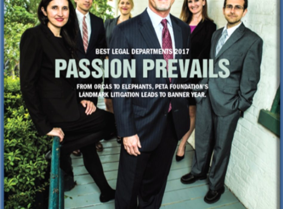 corporate counsel cover