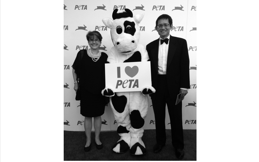 PETA 35th with Cow