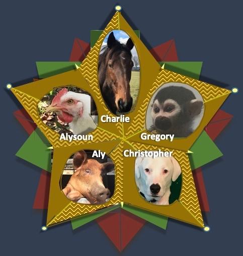 Christmas 2018 Animal Star Ornament 2