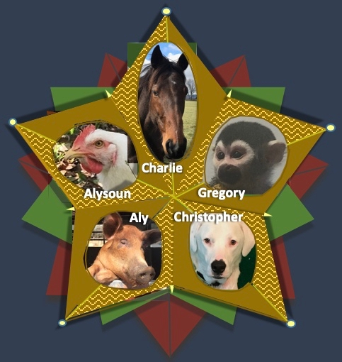 Christmas 2018 Animal Star Ornament 2