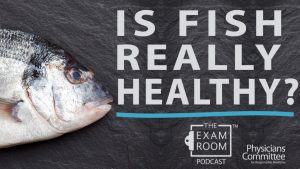 Is Fish Really Healthy?