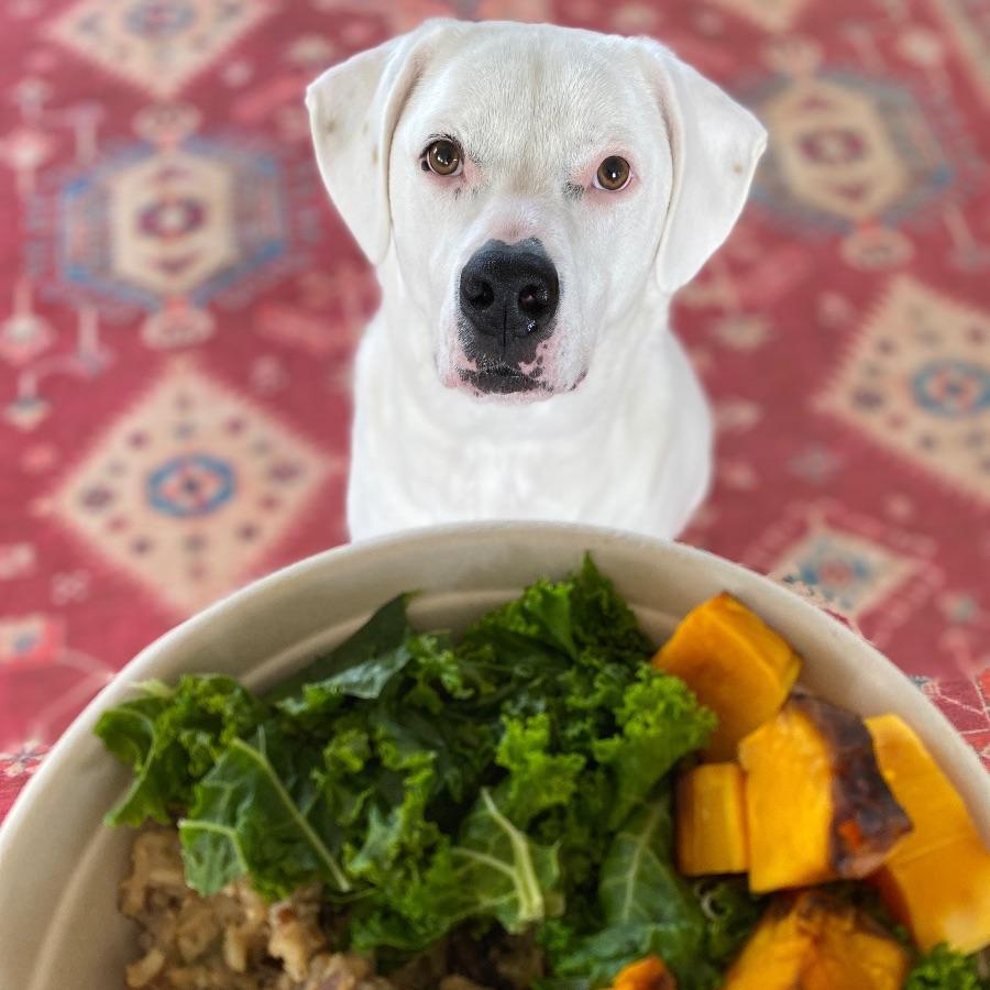 Christopher eyeing vegan lunch